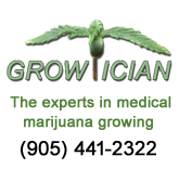 Growtician Logo